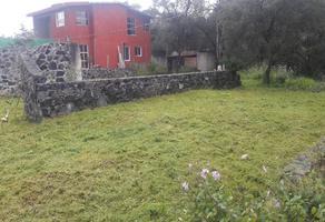 Foto de terreno habitacional en venta en sn , centro ocoyoacac, ocoyoacac, méxico, 0 No. 01