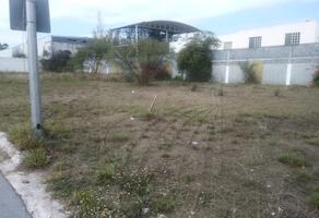 Foto de terreno habitacional en renta en s/n , cerradas de bugambilias, guadalupe, nuevo león, 19450479 No. 01