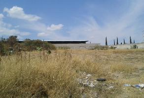 Foto de terreno habitacional en venta en s/n , cerro del cuatro 1ra. sección, san pedro tlaquepaque, jalisco, 5862222 No. 02
