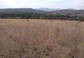 Foto de terreno habitacional en venta en s/n , charo, charo, michoacán de ocampo, 12670952 No. 01