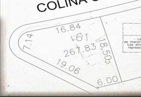 Foto de terreno habitacional en venta en s/n , colinas del valle 2 sector, monterrey, nuevo león, 19444682 No. 01