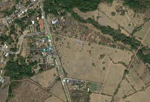 Foto de terreno habitacional en venta en s/n , comala, comala, colima, 9266990 No. 01