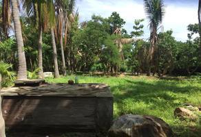Foto de terreno habitacional en venta en sn , punta de zicatela, santa maría colotepec, oaxaca, 17667500 No. 01