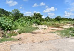 Foto de terreno habitacional en venta en s/n , conkal, conkal, yucatán, 0 No. 01