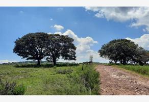 Foto de terreno habitacional en venta en s/n , donicá, amealco de bonfil, querétaro, 0 No. 01