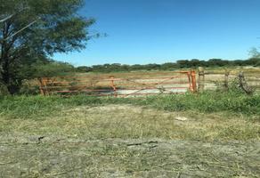 Foto de terreno habitacional en venta en s/n , dulces nombres, pesquería, nuevo león, 19437439 No. 01