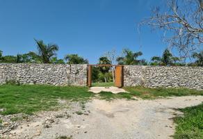 Foto de rancho en venta en sn , dzitya, mérida, yucatán, 0 No. 01