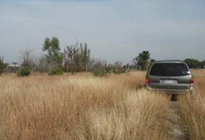 Foto de terreno habitacional en venta en s/n , el fraile, montemorelos, nuevo león, 0 No. 01