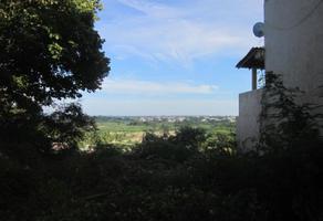 Foto de terreno habitacional en venta en sn , el mirador, acapulco de juárez, guerrero, 0 No. 01