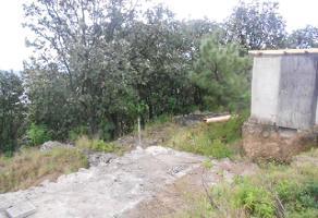 Foto de terreno comercial en venta en s/n , el palomar, tlajomulco de zúñiga, jalisco, 6361363 No. 01