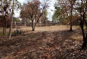 Foto de terreno habitacional en venta en s/n , emiliano zapata sur, mérida, yucatán, 12159563 No. 01