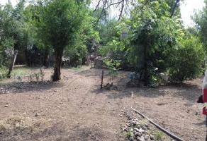 Foto de terreno comercial en venta en s/n , estanzuela nueva, monterrey, nuevo león, 5950579 No. 01
