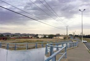 Foto de terreno habitacional en venta en s/n , gonzález norte, saltillo, coahuila de zaragoza, 14963185 No. 07