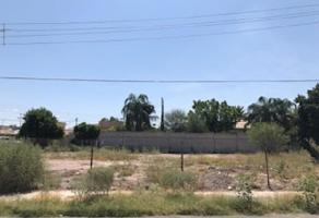 Foto de terreno habitacional en venta en s/n , granjas san isidro, torreón, coahuila de zaragoza, 12159997 No. 03