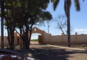 Foto de rancho en venta en s/n , herrera leyva, durango, durango, 15123928 No. 01