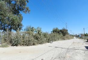Foto de terreno comercial en venta en s/n , huertas de san gaspar, tonalá, jalisco, 5863396 No. 04