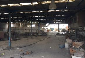 Foto de nave industrial en venta en s/n , jacinto canek, gómez palacio, durango, 8799387 No. 05