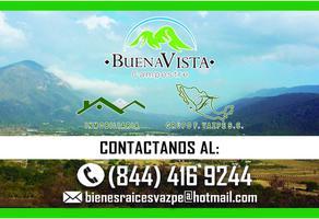 Foto de terreno habitacional en venta en s/n , jame, arteaga, coahuila de zaragoza, 0 No. 01