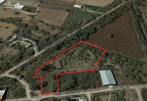 Foto de terreno comercial en venta en s/n , jardines de la calera, tlajomulco de zúñiga, jalisco, 6361832 No. 01