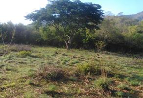 Foto de terreno comercial en venta en sn , junta del potrero, santa maría colotepec, oaxaca, 17667523 No. 01