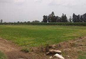 Foto de terreno comercial en venta en s/n , la calerilla, san pedro tlaquepaque, jalisco, 5867427 No. 01