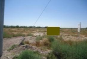 Foto de terreno habitacional en venta en s/n , la concha, torreón, coahuila de zaragoza, 10194147 No. 01