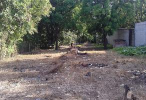 Foto de terreno habitacional en renta en s/n , la gloria, tuxtla gutiérrez, chiapas, 14068019 No. 01