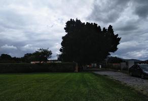 Foto de terreno habitacional en venta en sn , la moraleda, atlixco, puebla, 0 No. 01