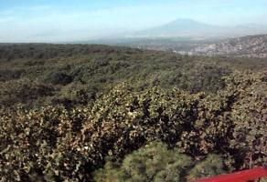 Foto de terreno comercial en venta en s/n , la primavera, zapopan, jalisco, 5867317 No. 01