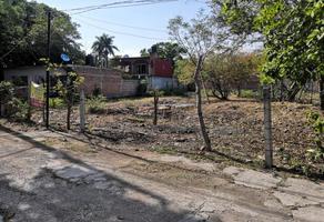 Foto de terreno habitacional en venta en sn , la toma, miacatlán, morelos, 0 No. 01