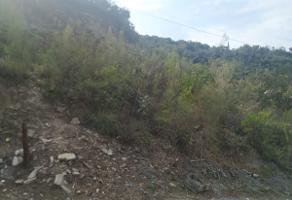 Foto de terreno habitacional en venta en s/n , las águilas, guadalupe, nuevo león, 10283774 No. 01