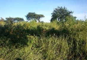 Foto de terreno comercial en venta en s/n , las flores, san pedro tlaquepaque, jalisco, 5950871 No. 01