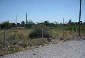 Foto de terreno habitacional en venta en s/n , las luisas, torreón, coahuila de zaragoza, 3994044 No. 01