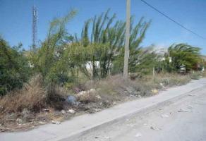 Foto de terreno habitacional en venta en s/n , las luisas, torreón, coahuila de zaragoza, 3994649 No. 01