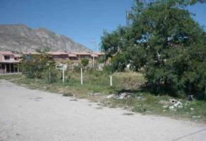 Foto de terreno habitacional en venta en s/n , las luisas, torreón, coahuila de zaragoza, 3994809 No. 04