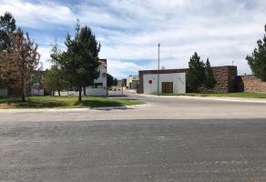 Foto de terreno habitacional en venta en s/n , las privanzas, durango, durango, 12601371 No. 02
