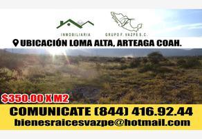 Foto de terreno industrial en venta en s/n , loma alta, arteaga, coahuila de zaragoza, 8861417 No. 01