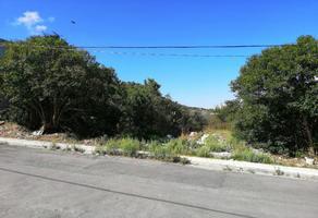 Foto de terreno habitacional en venta en s/n , lomas de lourdes, saltillo, coahuila de zaragoza, 12163494 No. 02