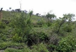Foto de terreno comercial en venta en s/n , lomas de tejeda ing., tlajomulco de zúñiga, jalisco, 5861860 No. 01