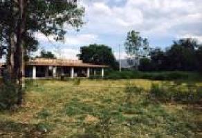 Foto de terreno comercial en venta en s/n , lomas de tejeda ing., tlajomulco de zúñiga, jalisco, 5862080 No. 01