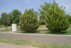 Foto de terreno habitacional en venta en s/n , los fresnos, torreón, coahuila de zaragoza, 15474244 No. 01