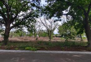 Foto de terreno habitacional en venta en s/n , los molinos, saltillo, coahuila de zaragoza, 0 No. 01