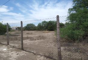 Foto de terreno habitacional en venta en s/n , los nogales, torreón, coahuila de zaragoza, 13742044 No. 03