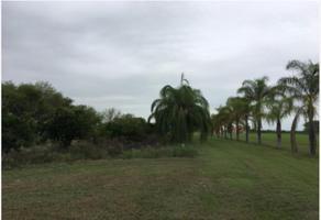Foto de terreno habitacional en venta en sn , los palmitos, cadereyta jiménez, nuevo león, 0 No. 01