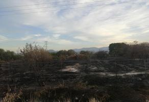 Foto de terreno habitacional en venta en s/n , los pinos, lerdo, durango, 8800488 No. 01