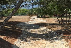Foto de terreno comercial en venta en s/n , los rodriguez, santiago, nuevo león, 10000557 No. 01