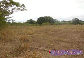 Foto de terreno habitacional en venta en sn , medellin de bravo, medellín, veracruz de ignacio de la llave, 17078224 No. 01