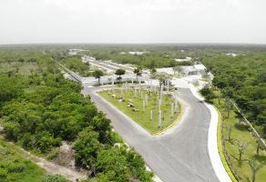 Foto de terreno habitacional en venta en s/n , merida centro, mérida, yucatán, 0 No. 01