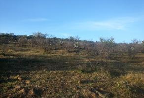 Foto de terreno comercial en venta en s/n , mesa colorada oriente, zapopan, jalisco, 5869056 No. 01