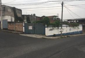 Foto de terreno comercial en renta en sn , méxico, córdoba, veracruz de ignacio de la llave, 0 No. 01